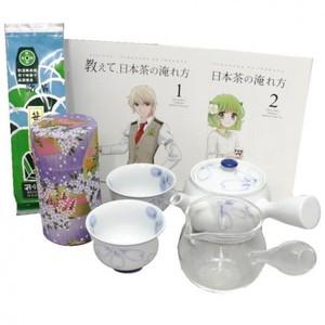 【茶器セット/茶道具セット】 誰でもお気軽煎茶碗5点セット (入れ方用パンフレット 2冊付)