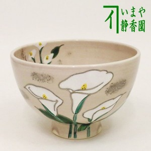 【茶器/茶道具 抹茶茶碗】 水芭蕉 水出宋絢作