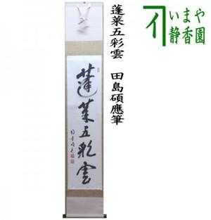 【茶器/茶道具 掛軸(掛け軸)】 一行 蓬莱五彩雲 田島碩應筆