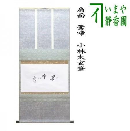 【茶器/茶道具 掛軸(掛け軸)】 横軸 扇面 鶯啼 小林太玄筆