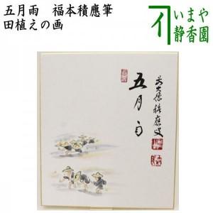 【茶器/茶道具 色紙画賛】 直筆 五月雨 田植えの画 福本積應筆