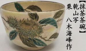 【茶器/茶道具 抹茶茶碗】 乾山写し 栗 八木海峰作