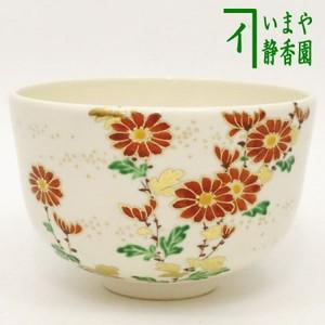 【茶器/茶道具 抹茶茶碗 重陽の節句】 色絵茶碗 菊 山本閑人作