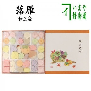 8%【お菓子 和菓子/干菓子】 落雁(らくがん) 和三盆糖 秋の恵み 籠盛り ばいこう堂
