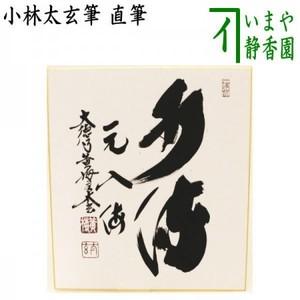 【茶器/茶道具 色紙】 直筆 水流元入海 小林太玄筆