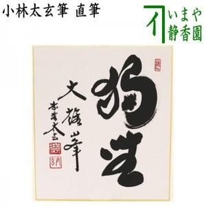 【茶器/茶道具 色紙】 直筆 独坐大雄峰 小林太玄筆