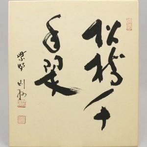 【茶器/茶道具 色紙】 直筆 松樹千年翠 秋吉則州筆