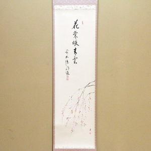 【茶器/茶道具 掛軸(掛け軸)】 一行画賛 花気暖青雲 戸上明道筆 枝垂れ桜の画 仲有里子画