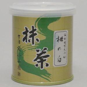 【抹茶】 栂の白 30g入り 表千家 而妙斎好み 山政小山園 (薄茶用)