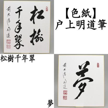 【茶器/茶道具 色紙画賛/春】 直筆 松樹千年翠又は夢 戸上明道筆